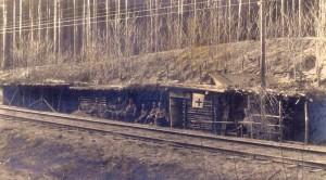 Punkt sanitarny w tarnogórskich lasach